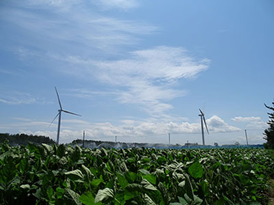 Wind Farm Tsugaru(Source: Green Power Investment Corporation)
